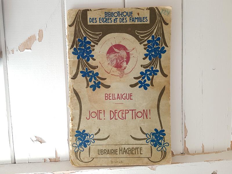 画像1: フランスアンティーク HACHETTE社の本 (1)