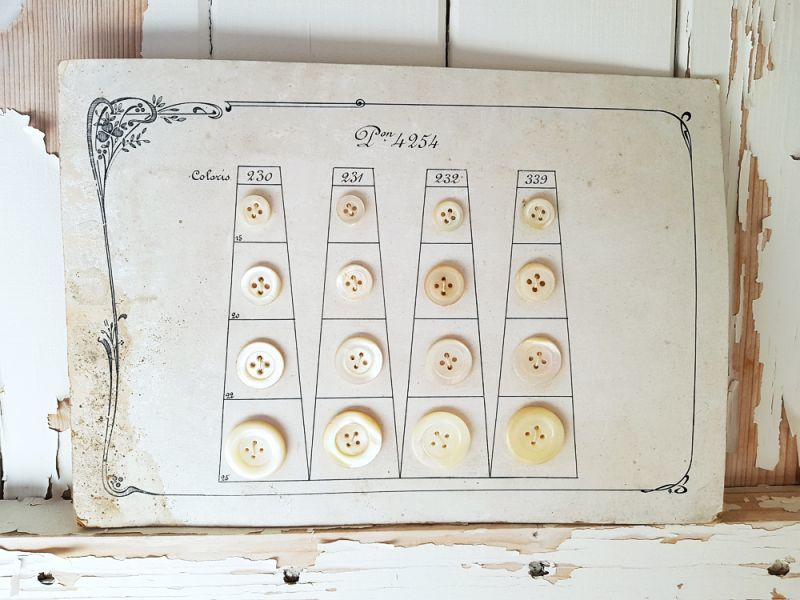 画像1: フランスアンティーク 貝ボタンサンプルシート (1)